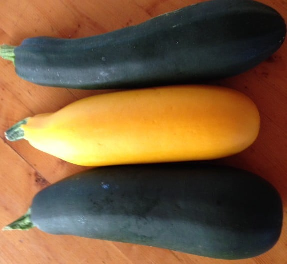 Summer Squash and Zucchini