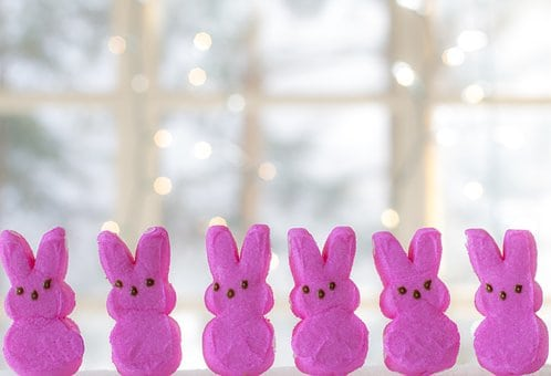 Easter Decoration Peeps