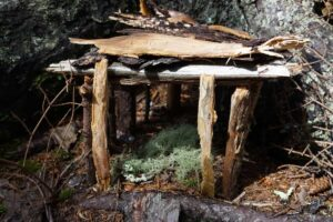DIY Fairy Houses from Nature