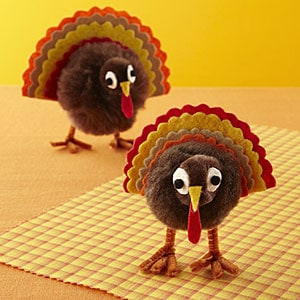 Pom-pom turkey project