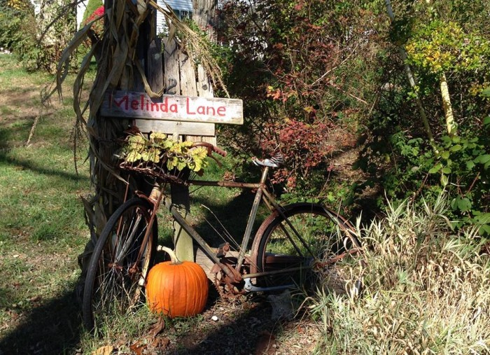 Rustic bicycle display in fall