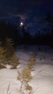 Almost Full Moon Snowshoe Outing