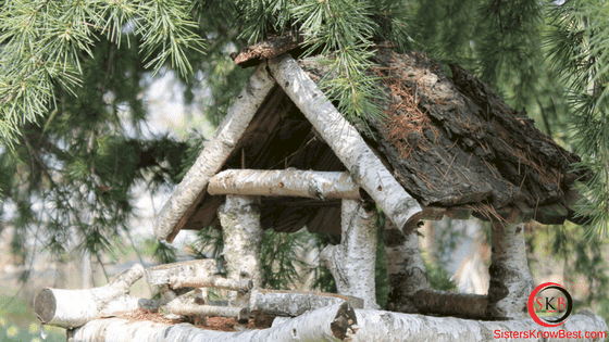 Birch Bark House by Sisters Know Best
