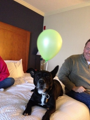 Robbie with his balloon