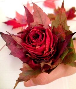 Fall Leaf Rose